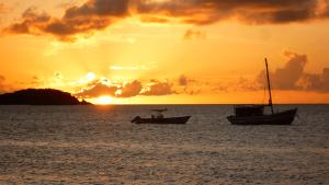 grenada sailing week sunsets in pure grenada